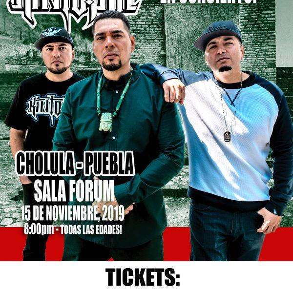 PUEBLA Regular Ticket